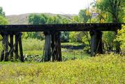 27th Sep 2020 - Abandoned Railway, Dry Creek