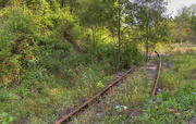 3rd Oct 2020 - Railroad tracks
