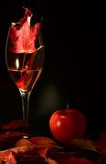 3rd Oct 2020 - Autumn Wine