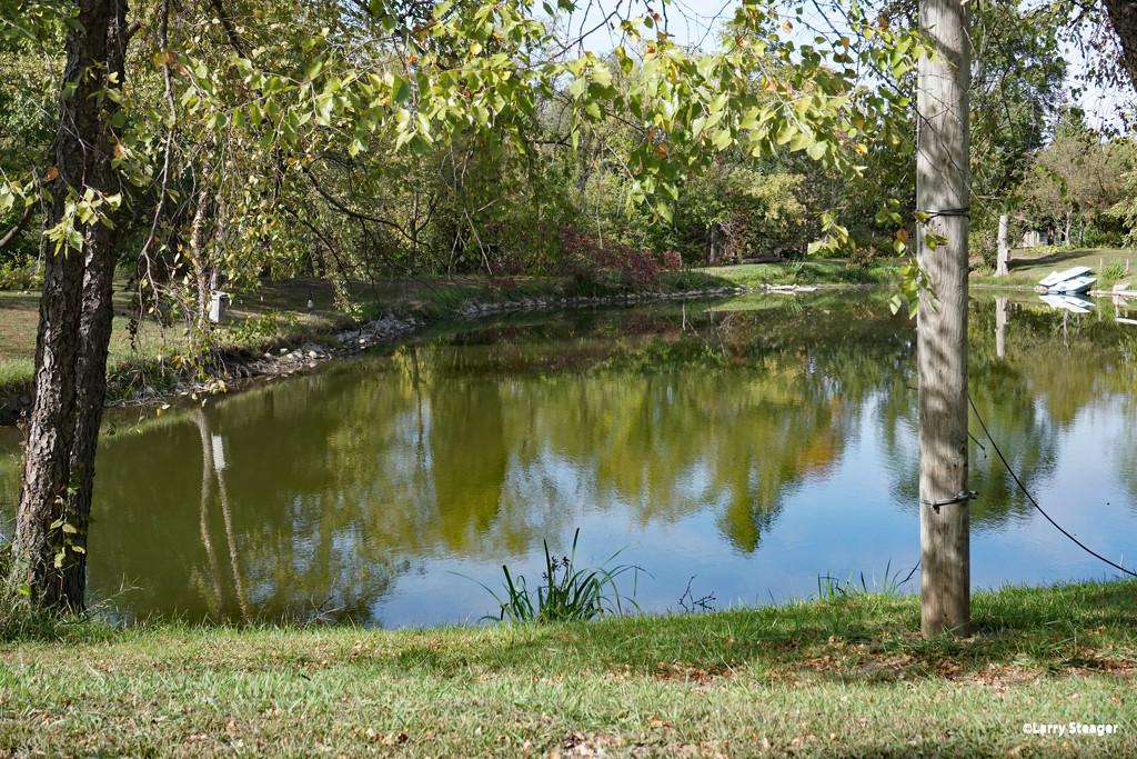 Lovely pond by larrysphotos