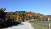 3rd Oct 2020 - Fall Colors