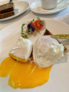 5th Oct 2020 - Poached eggs.