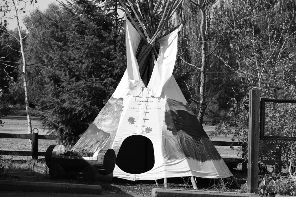 Teepee in Black and White by bjywamer