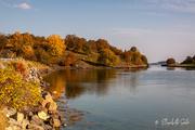 3rd Oct 2020 - Autumn on Hitra