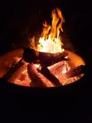 3rd Oct 2020 - Bonfire weekends