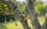 4th Oct 2020 - Autumn Garland