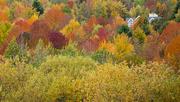 4th Oct 2020 - Lake Iroquois