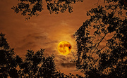 4th Oct 2020 - Full Moon Rise!