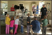 4th Oct 2020 - Milking time