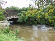 4th Oct 2020 - River Cary