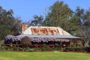 6th Oct 2020 - Rustic wisteria