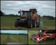 6th Oct 2020 - Spring farmwork