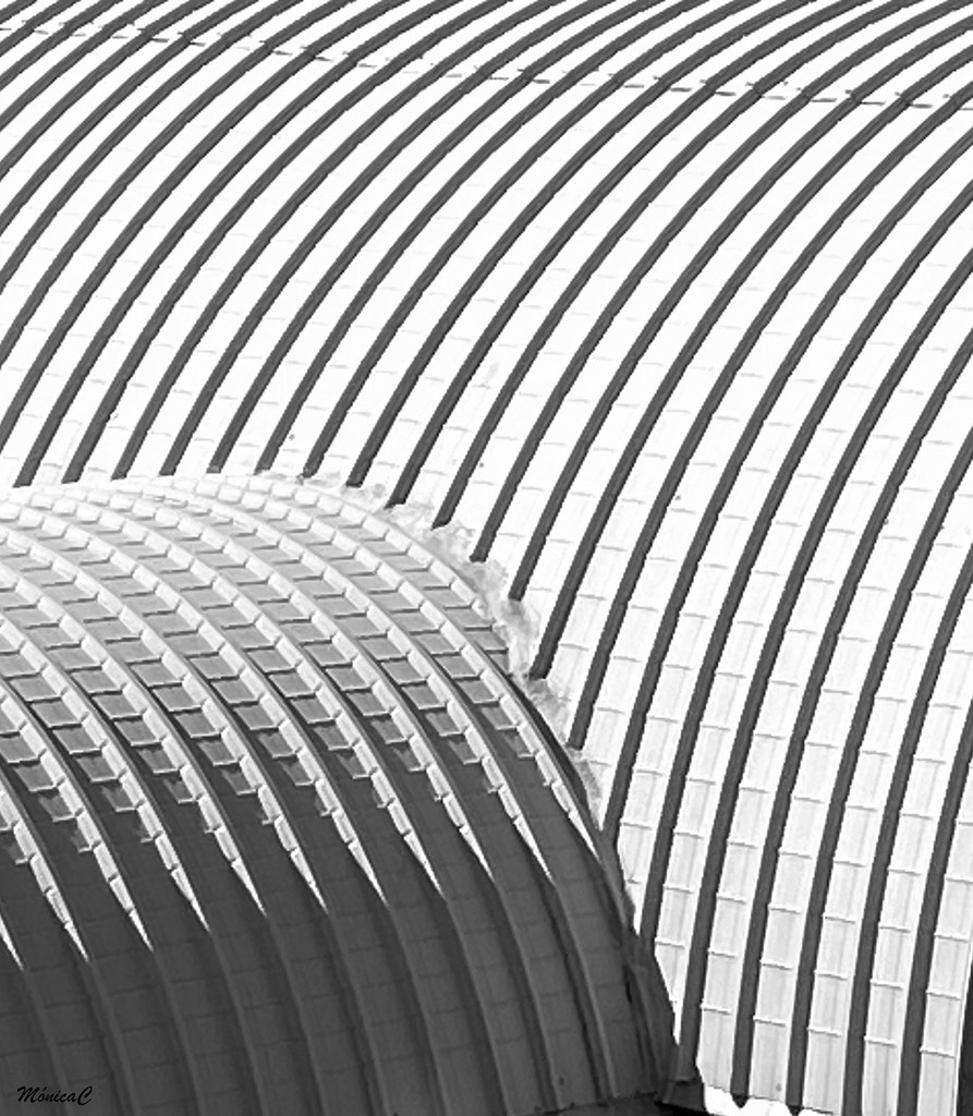 Curves by monicac