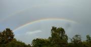 6th Oct 2020 - Rainbows