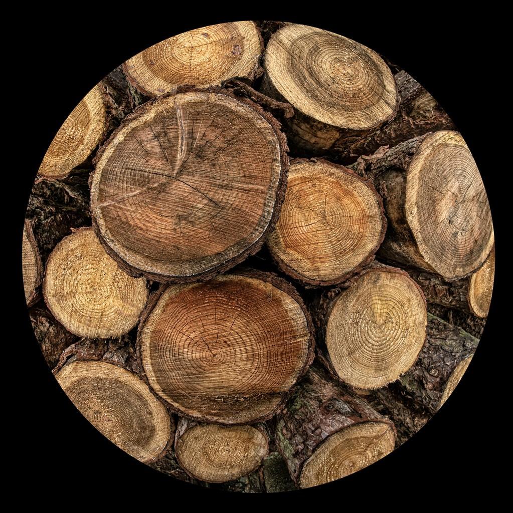 Log ends roundel  by dulciknit