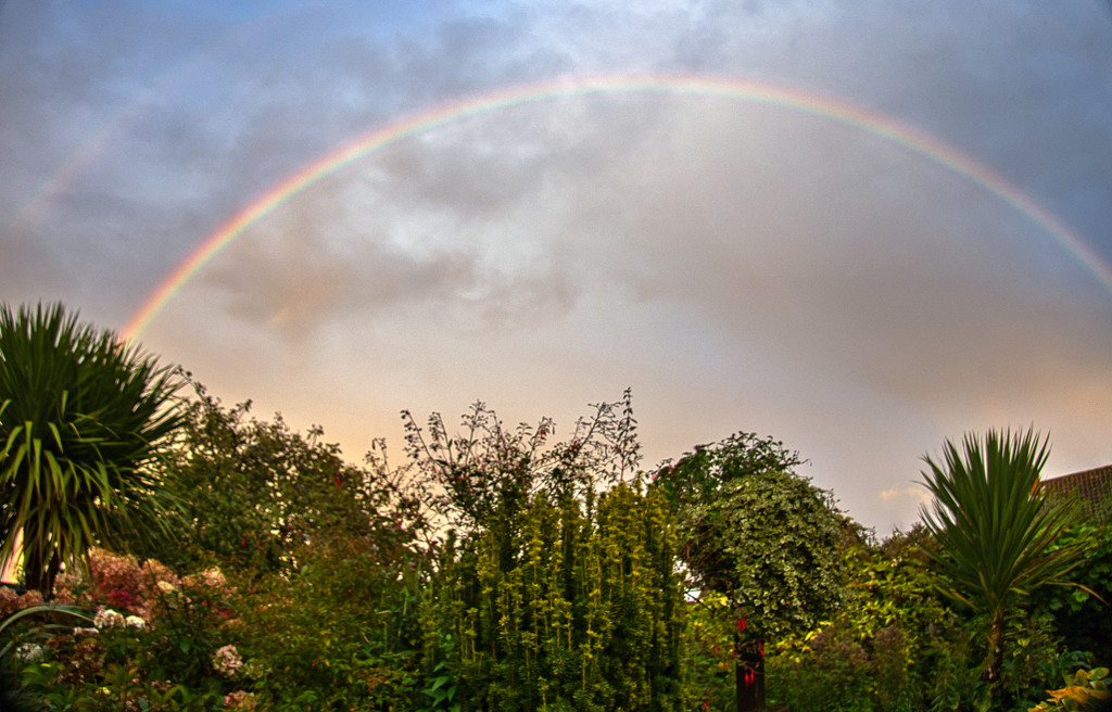 Garden Rainbow by tonygig