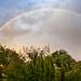 Garden Rainbow by tonygig