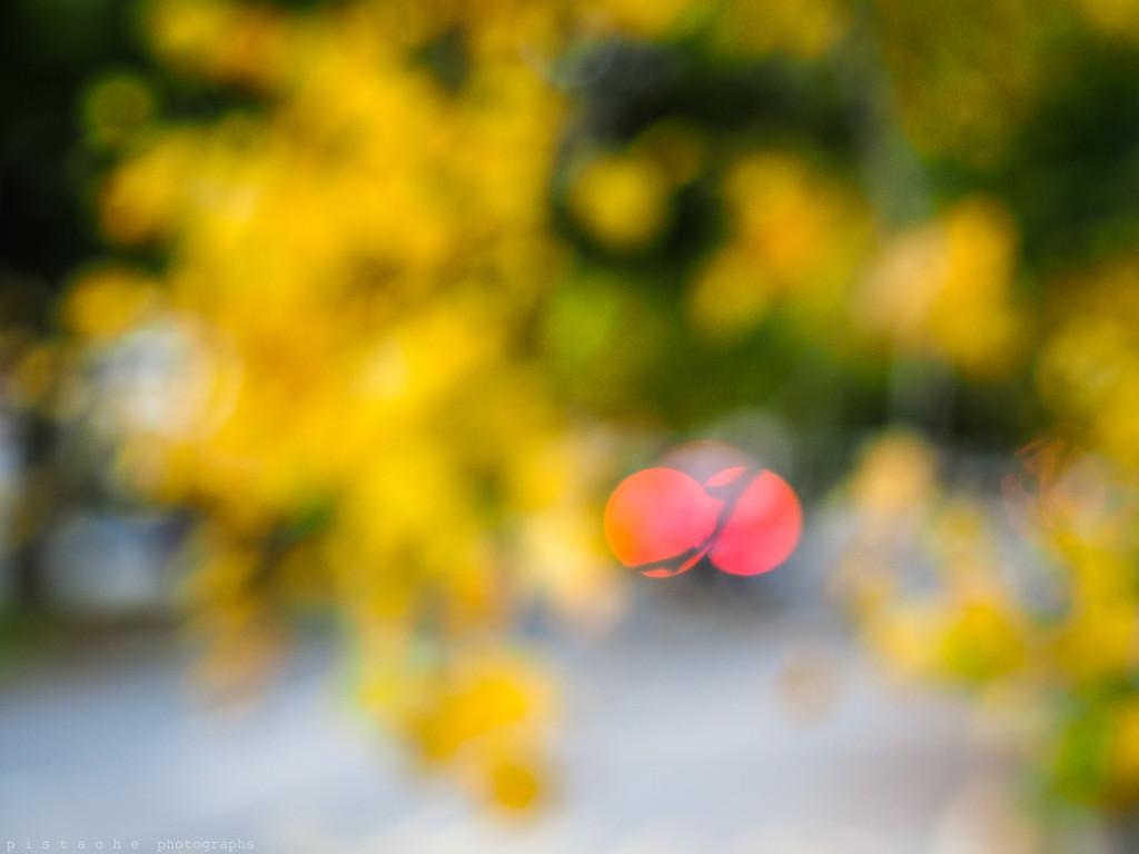 autumn blobs by pistache