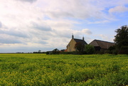 6th Oct 2020 - A farmhouse + barn and rapeseed field.