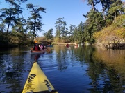 6th Oct 2020 - Afternoon Paddle