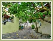 7th Oct 2020 - A Village View,Sitanos,Crete