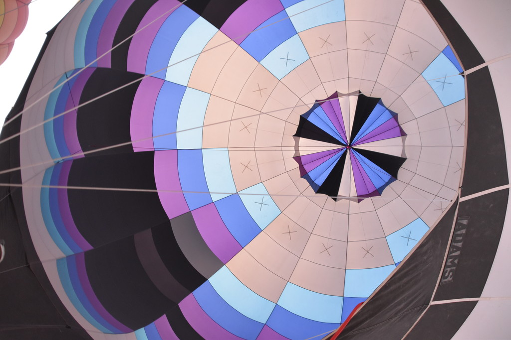 Inside Shot Of A Balloon. by bigdad