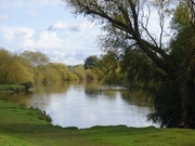 7th Oct 2020 - Beside the River Ouse