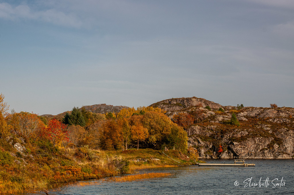 Fall on Hitra by elisasaeter