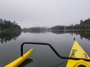 7th Oct 2020 - Foggy Paddle