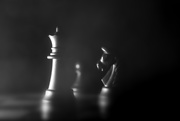 7th Oct 2020 - the queen, a pawn and a knight