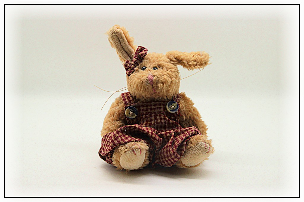 Bunny base by olivetreeann