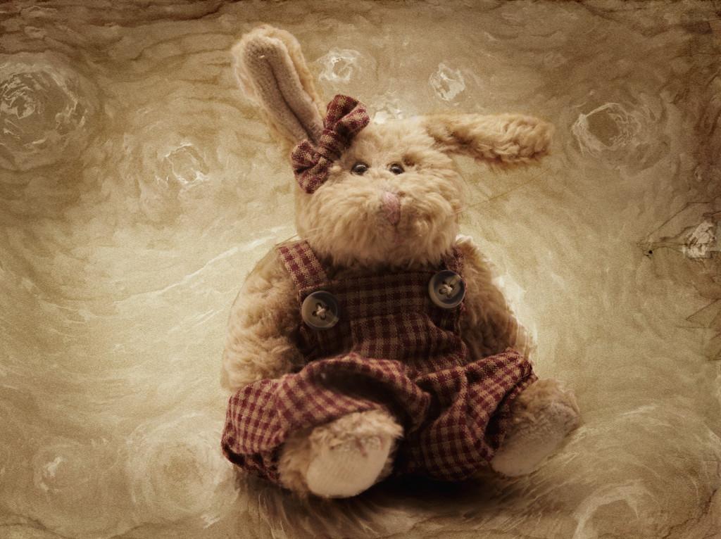 Bunny Edit 1 by olivetreeann