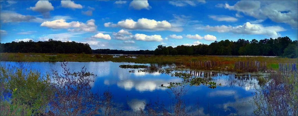 Minsi Lake Panorama by olivetreeann