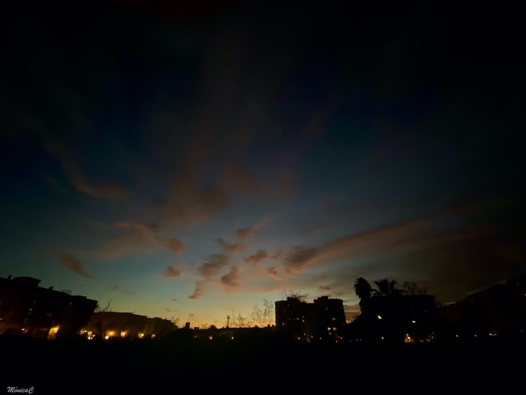 Sunset by monicac