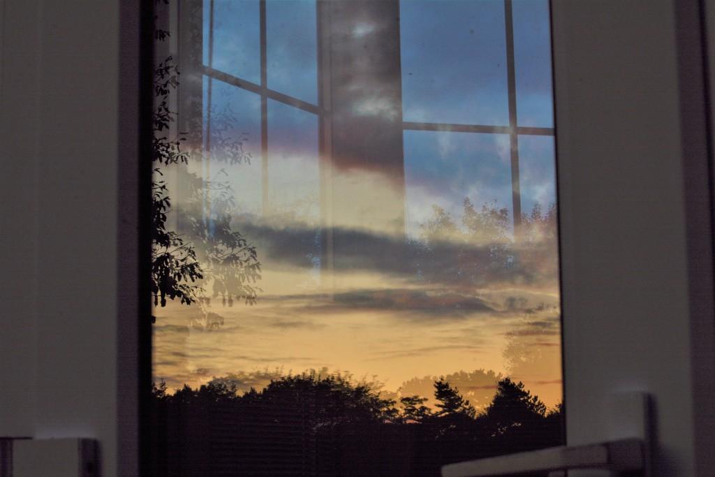 Conservatory door reflection......... by ziggy77