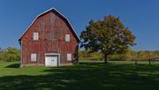 8th Oct 2020 - barn