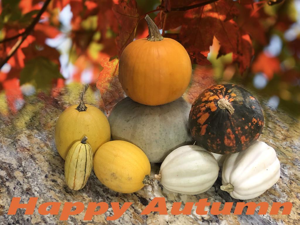 Happy Autumn by homeschoolmom