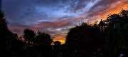 9th Oct 2020 - Morning Sky From The Garden.