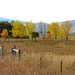 Autumn In Montana
