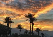 9th Oct 2020 - Autumn Sunset