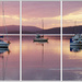 Pink Hour Triptych by onewing