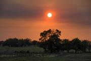 5th Oct 2020 - Purple Haze and Descending Sun