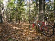 10th Oct 2020 - Backup Bike!