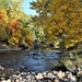 Autumn along the Poudre by sandlily