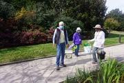 11th Oct 2020 - Garden Volunteers