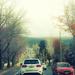 Roads Taken-12