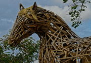 11th Oct 2020 - 1011 - Wooden Horse
