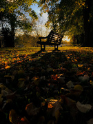 11th Oct 2020 - Sunset by the bench