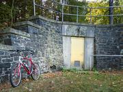 11th Oct 2020 - A shiny door in the woods