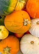 11th Oct 2020 - Pumpkins